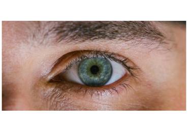 La nutrición de tus ojos